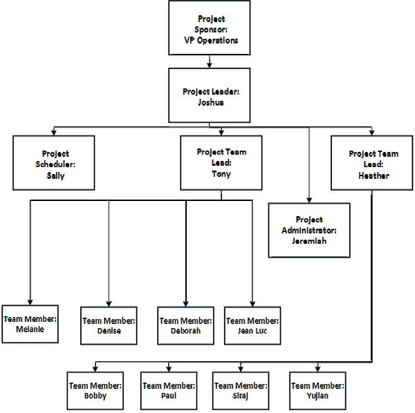 Team Structure